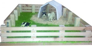 Model Calf House with field